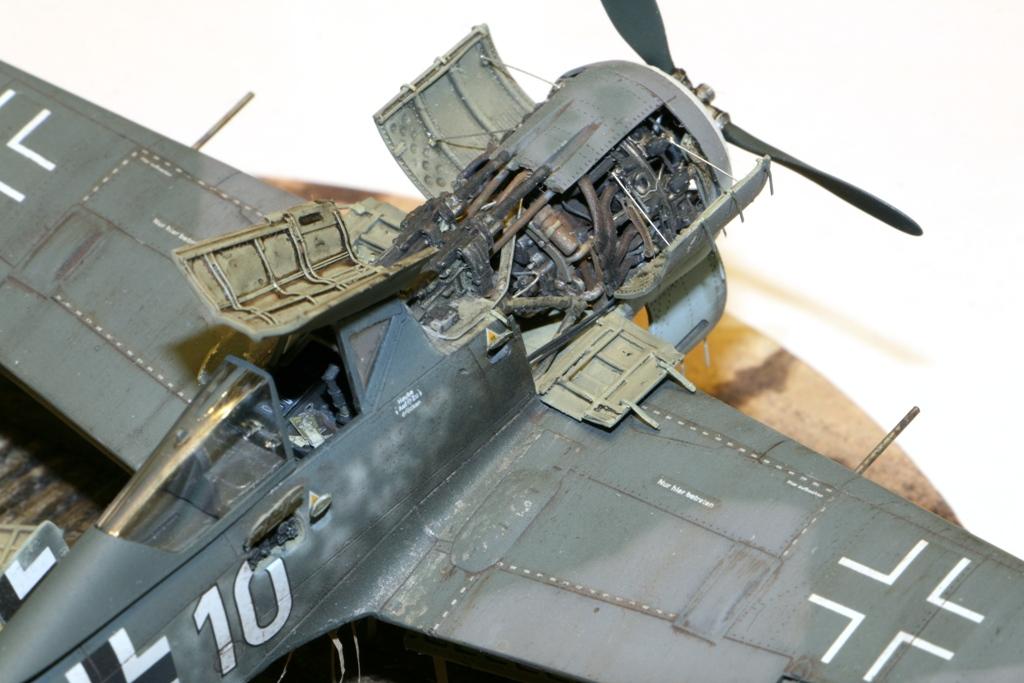 Focke Wulf Fw190A-8 Eduard 1/72 IMG_5174