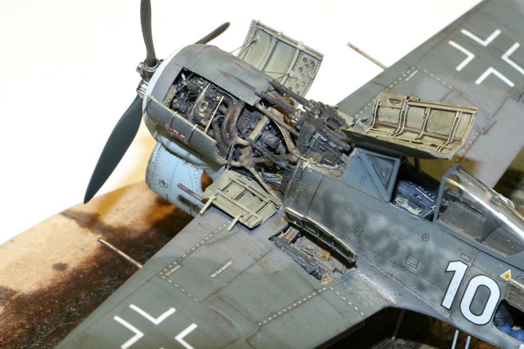 Focke Wulf Fw190A-8 Eduard 1/72 IMG_5172