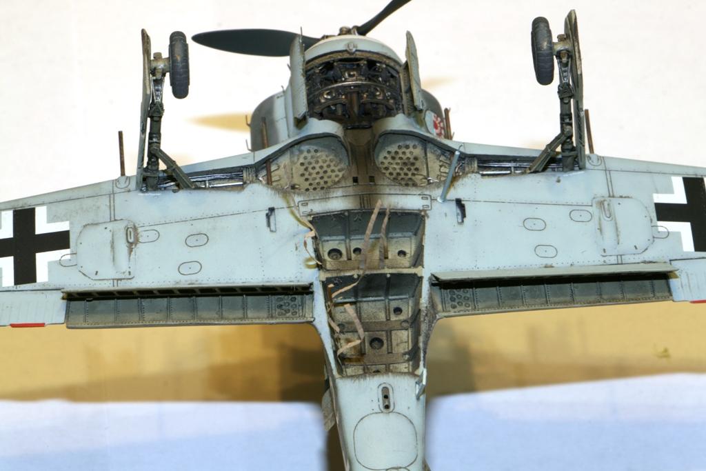 Focke Wulf Fw190A-8 Eduard 1/72 IMG_5178