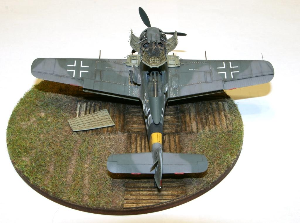 Focke Wulf Fw190A-8 Eduard 1/72 IMG_5167