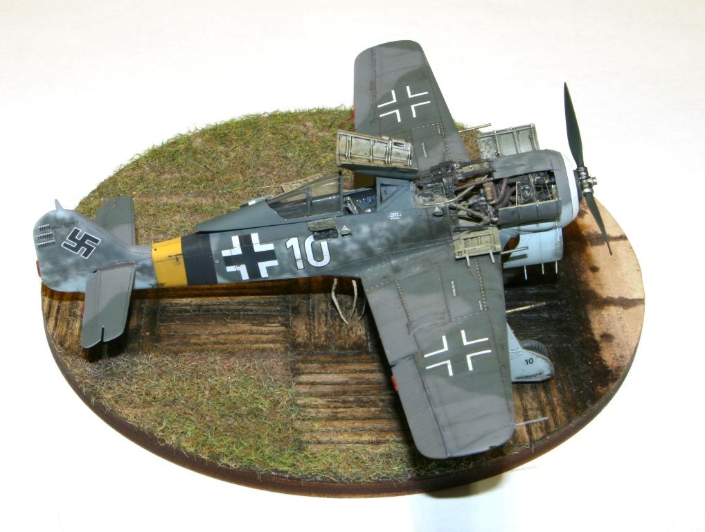 Focke Wulf Fw190A-8 Eduard 1/72 IMG_5169