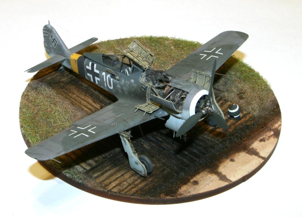 Focke Wulf Fw190A-8 Eduard 1/72 IMG_5170