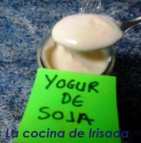 Yogur sin yogurtera 20140505_071550