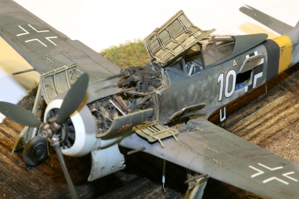 Focke Wulf Fw190A-8 Eduard 1/72 IMG_5173