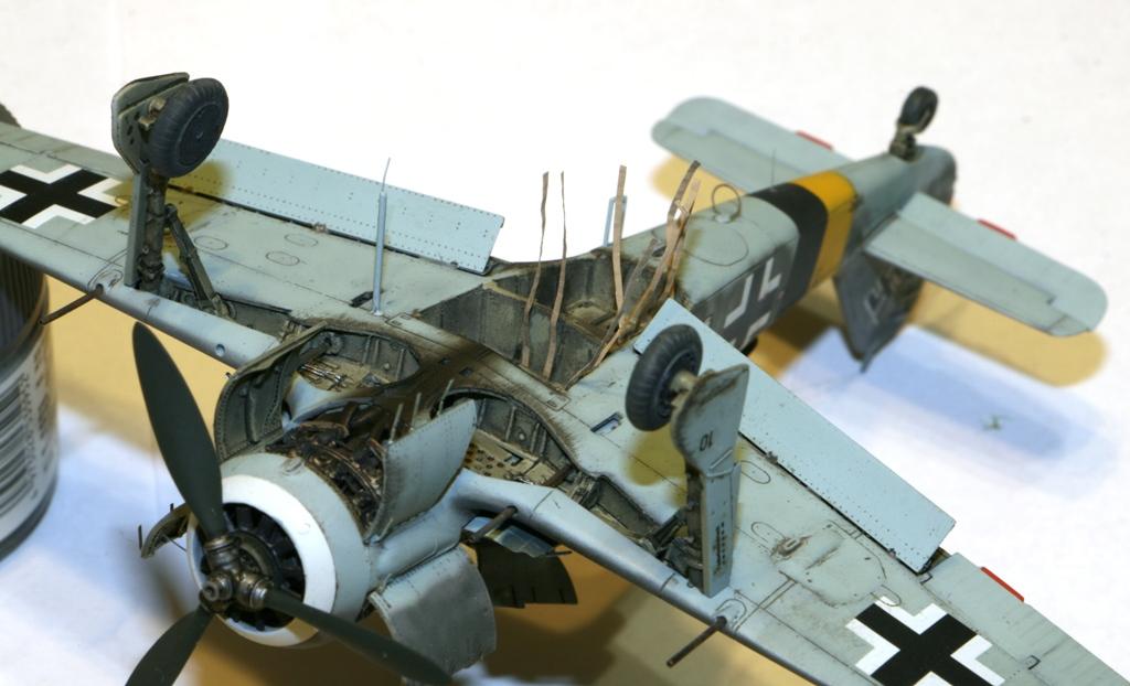 Focke Wulf Fw190A-8 Eduard 1/72 IMG_5181
