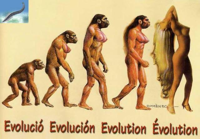 LA EVOLUCION DEL HOMBRE 10_Diez