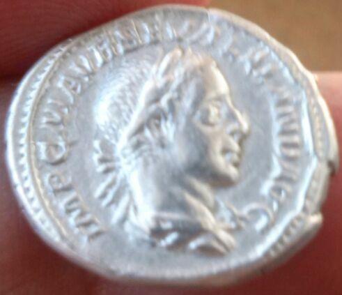 Denario de Alejandro Severo. P M TR P III COS P P. Paz estante a izq. Ceca Roma. Fbc9585b_d60b_4603_904a_b3ce6d9897b3_2