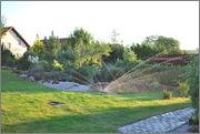 Léto na zahradě - Stránka 2 DSC_0001