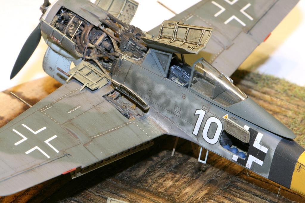 Focke Wulf Fw190A-8 Eduard 1/72 IMG_5176
