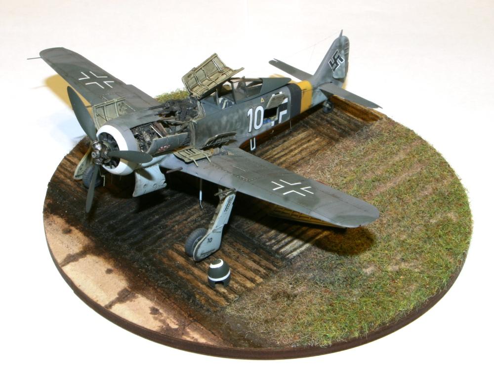 Focke Wulf Fw190A-8 Eduard 1/72 IMG_5164