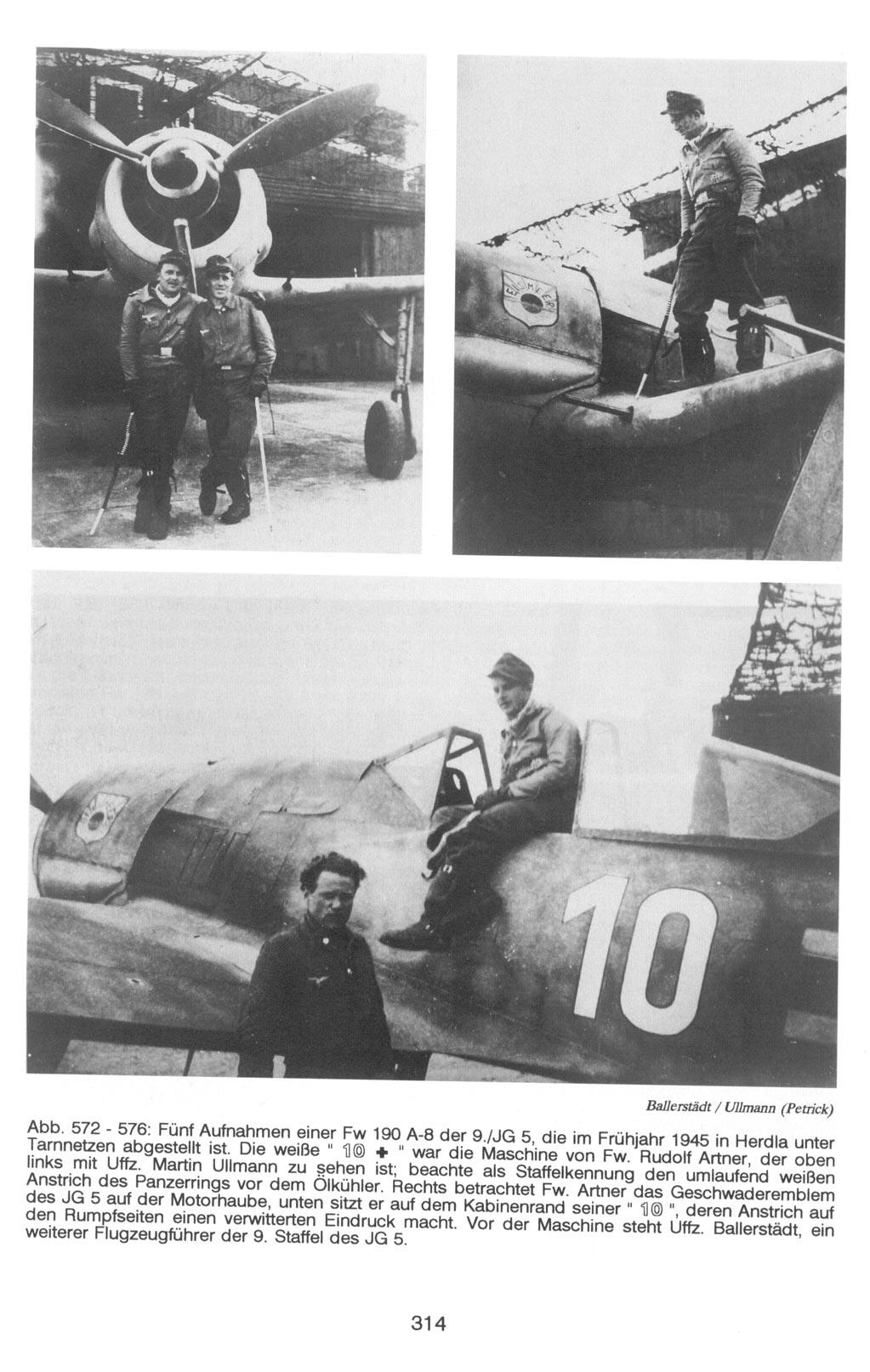 Focke Wulf Fw190A-8 Eduard 1/72 314