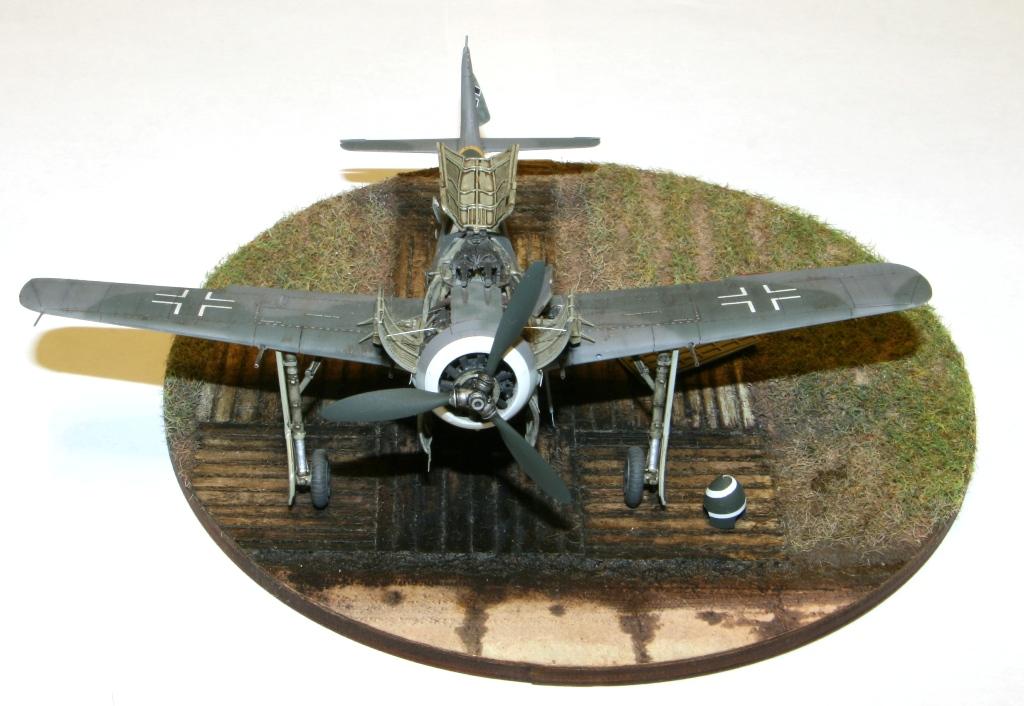 Focke Wulf Fw190A-8 Eduard 1/72 IMG_5171
