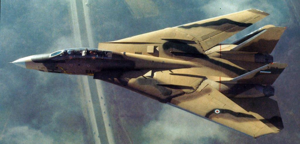 ال Mig-25 Foxbat ضد ال F-14 Tomcat : المواجهات الجويه في الثمانينيات  Image000057-1024x493