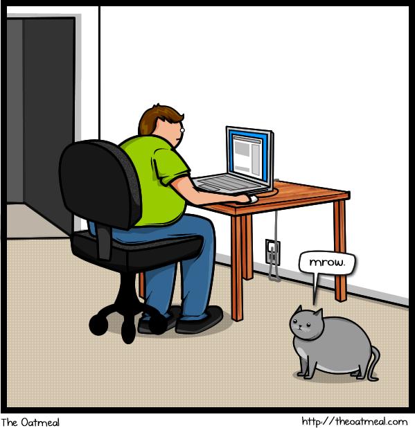 Joke About Cat Vs Internet 1