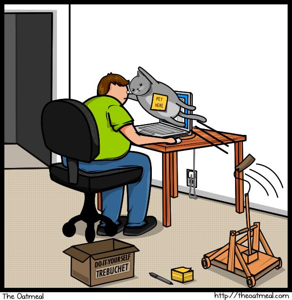 Joke About Cat Vs Internet 10