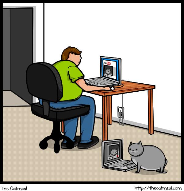 Joke About Cat Vs Internet 11