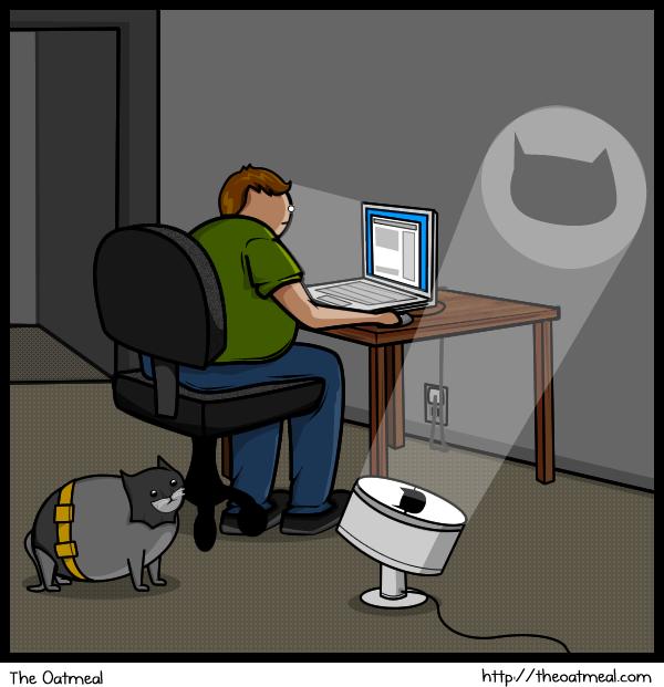 Joke About Cat Vs Internet 12