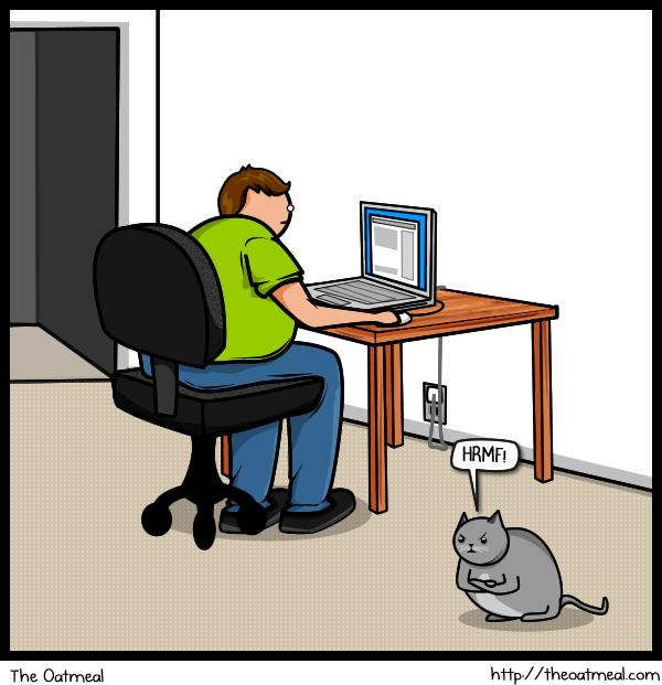 Joke About Cat Vs Internet 14