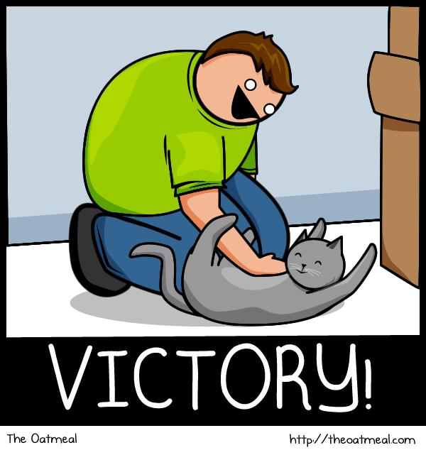 Joke About Cat Vs Internet 20