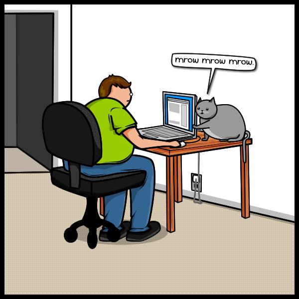 Joke About Cat Vs Internet 3