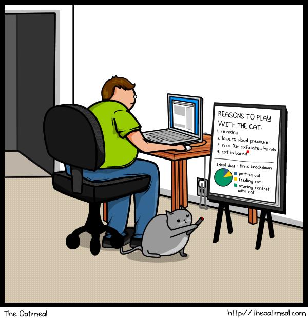Joke About Cat Vs Internet 8