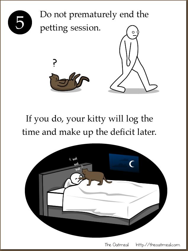 Joke About Cat Vs Internet 5