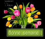 Message destiné à TOUS LES NOUVEAUX MEMBRES - Page 14 369875CreachouBl