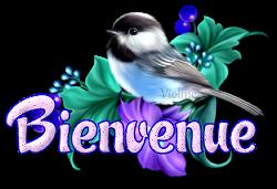 Message destiné à TOUS LES NOUVEAUX MEMBRES - Page 4 Creachou_Blinkie_1776