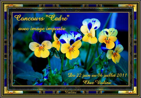 Chez Violine - Forum de Loisirs et Créations Graphiques ConcoursCadre220611Creachoub