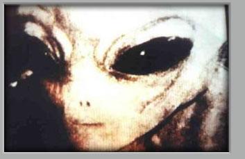 Les Races Humanoïdes existent sur toute les Planètes et Soleils !  (La Vie sur Vénus) Redalien