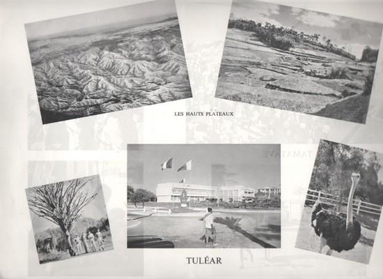 Présentation - Page 7 TULEAR-001