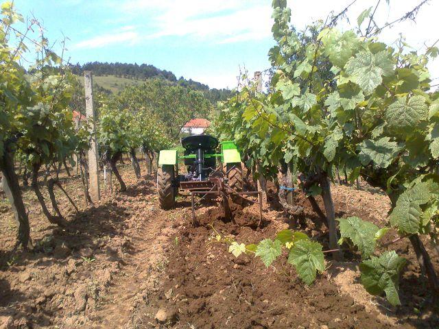 Radovi & poslovi u vinogradu 19748599