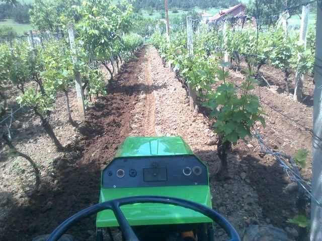 Radovi & poslovi u vinogradu 19748606