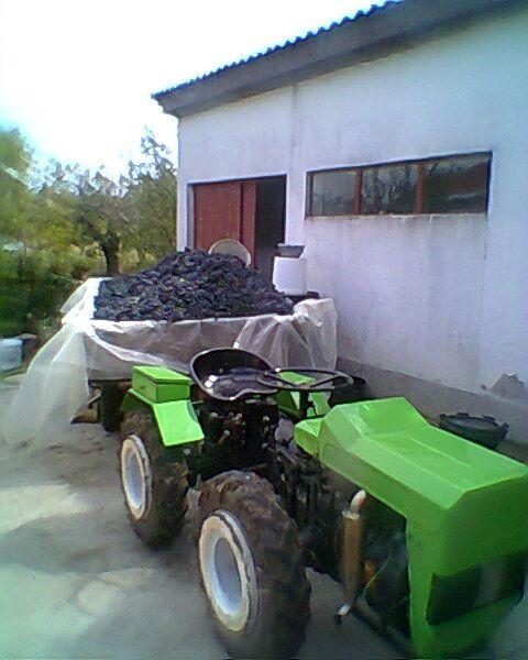 Radovi & poslovi u vinogradu 21102225