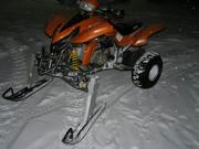 Skidor på en quad ATV P2224583