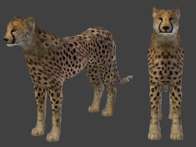 free cheetah prey Cheetah_Preview
