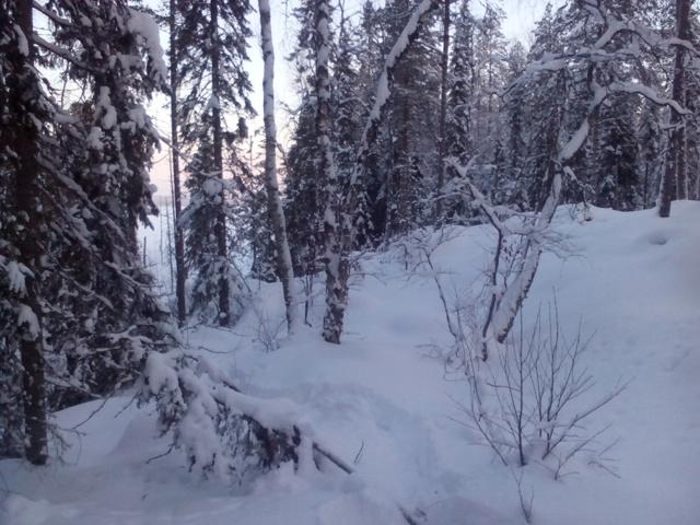 Не Аляска,но! IMG_20150104_131740