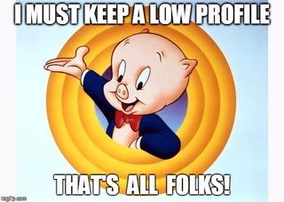 No Show Schmidt Porky_Pig