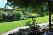 Léto na zahradě - Stránka 3 DSC_0076