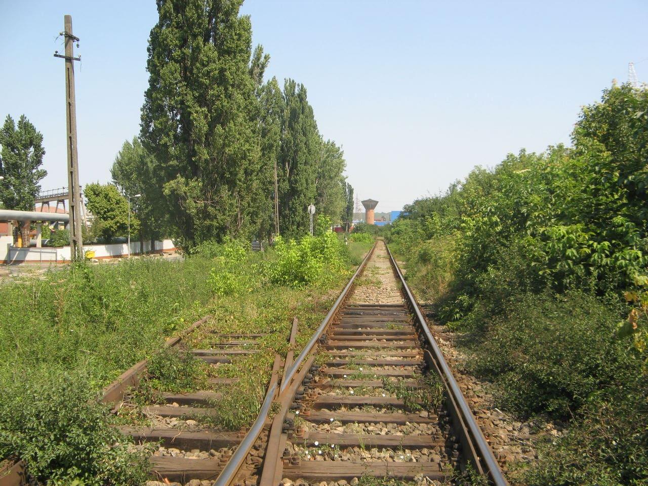 Calea ferată directă Oradea Vest - Episcopia Bihor IMG_0032