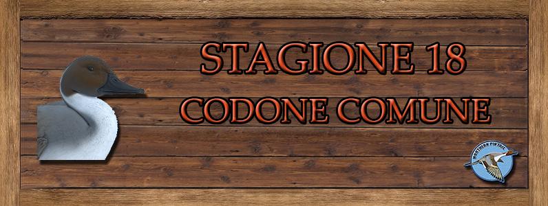 Codone Comune - ST. 18 CODONE_COMUNE