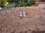 Srebrni keltski prstan Srebrni_keltski_prstan_celtiic_ring_3
