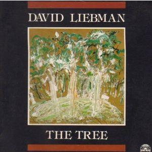 Dave Liebman 59474b87fcdaa0c9e276a040470d5360-300x300