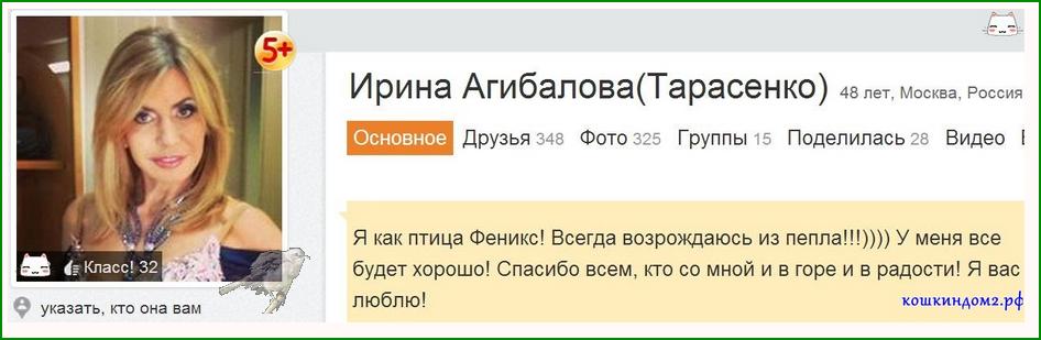 Ирина  Александровна Агибалова. - Страница 2 3GweN