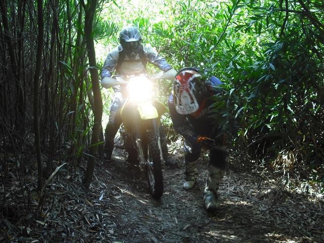 Portugal trail 2017 DSCF4536