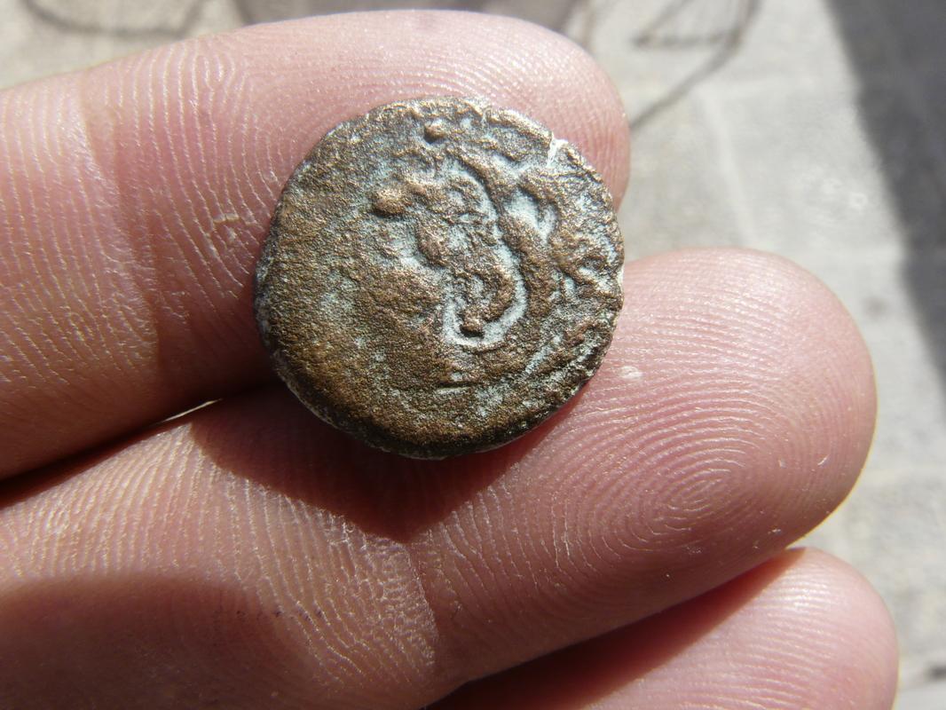 Moneda de Gades, semis? P1750519
