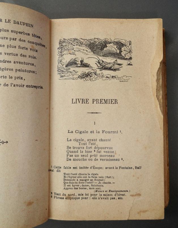 A cigarra e a formiga de La Fontaine - A infancia mítica e a imagem do músico vagabundo DSC07705_1