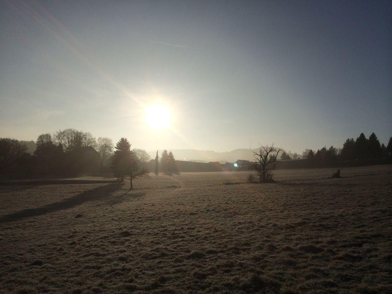 Sonnenbilder IMG_0941