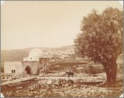 500 Mils Palestina, 1939 Raquel1