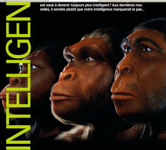 Pas de relation entre intelligence et taille de cerveau Image